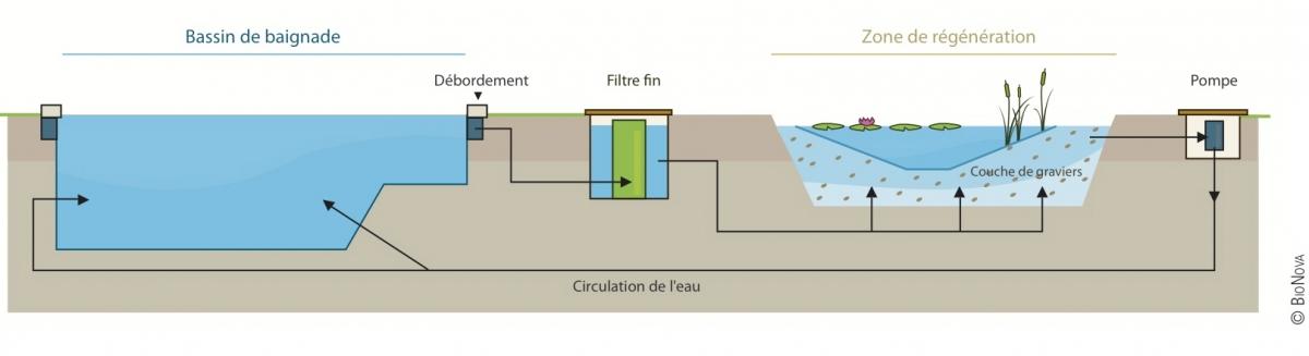 Piscine naturelle et baignade biologique haute savoie for Filtration piscine