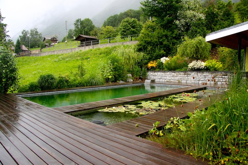 piscine naturelle et baignade biologique haute savoie paysagiste haute savoie 74 cr ation de. Black Bedroom Furniture Sets. Home Design Ideas