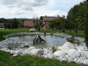 paysagiste douvaine bassin
