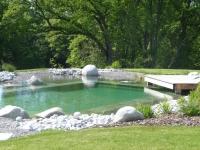 paysagiste haute savoie piscine naturelle