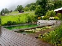 Piscine biologique - Paysagiste Haute Savoie