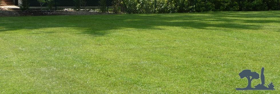 Paysagiste thonon les bains cr ation pelouse for Creation pelouse