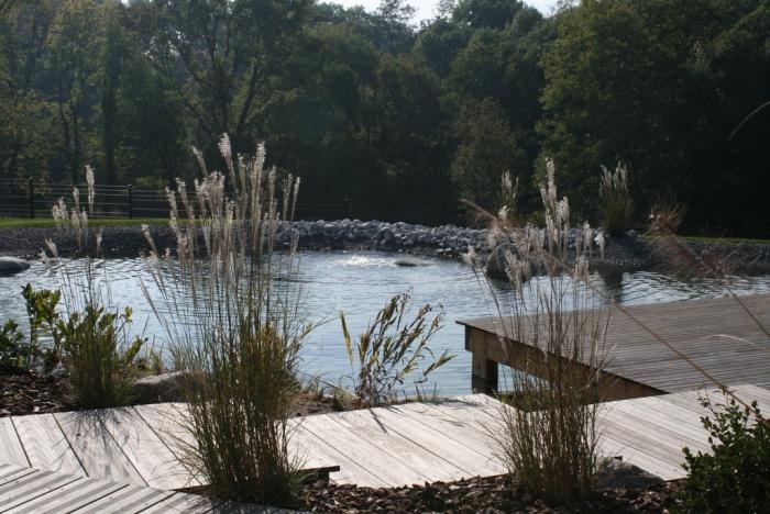 bassin biologique haute savoie piscine naturelle paysagiste haute savoie 74 cr ation de. Black Bedroom Furniture Sets. Home Design Ideas