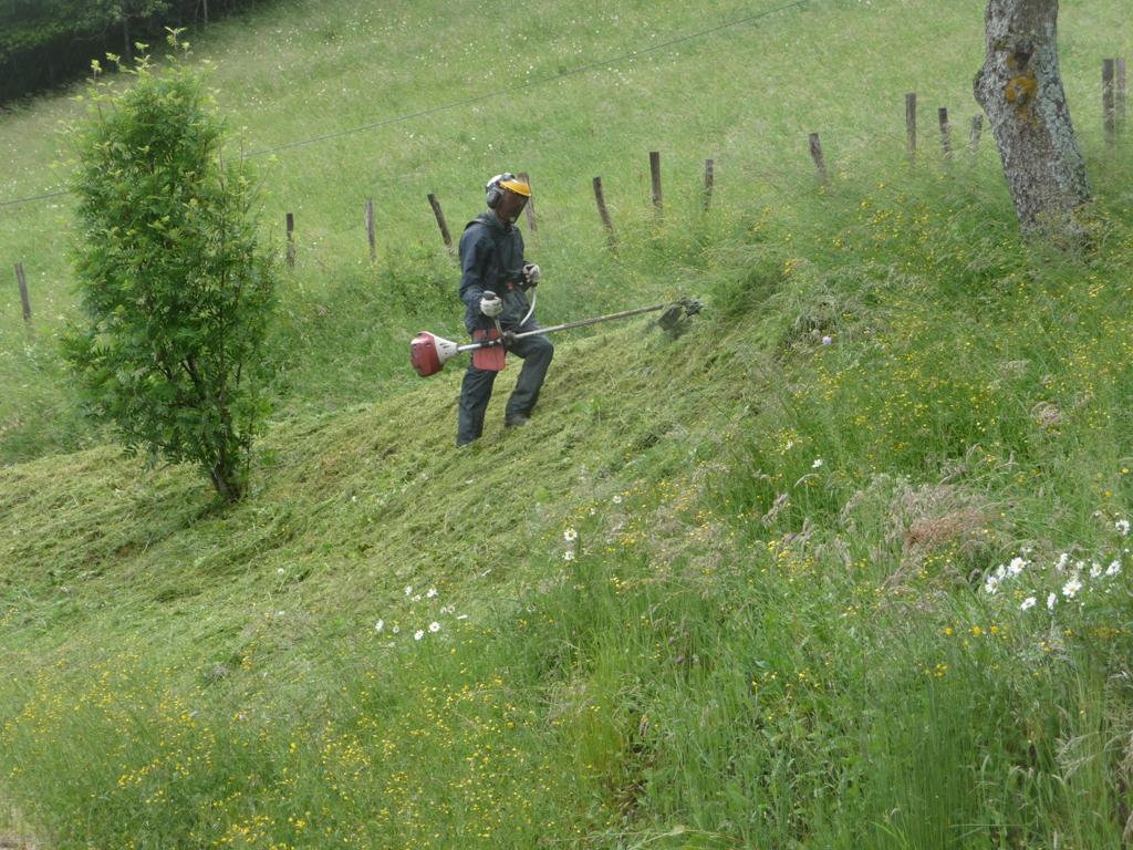 Paysagiste douvaine entretien jardin paysagiste haute for Tarif paysagiste tonte pelouse